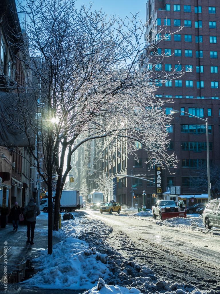 NYC Snow 2014 02